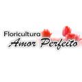 FLORICULTURA AMOR PERFEITO